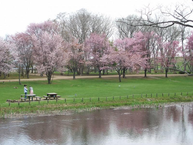 泉の沼公園