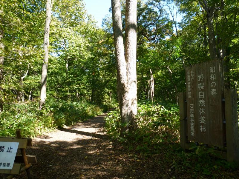 昭和の森 野幌森林自然休養林(登満別口)