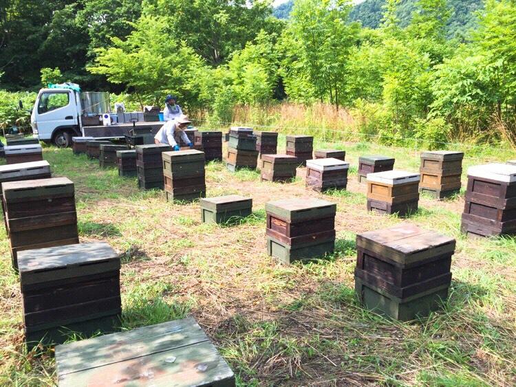 田中養蜂場