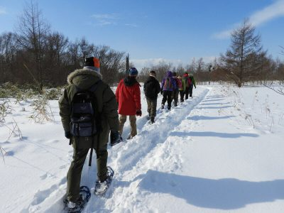 冬の森をかんじきで歩こう