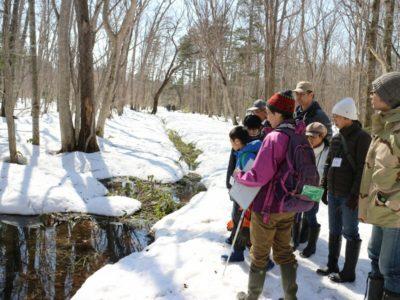 自然観察会「森の中で春をさがそう」