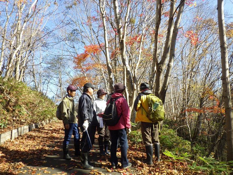 自然観察会「秋のありがとう観察会」