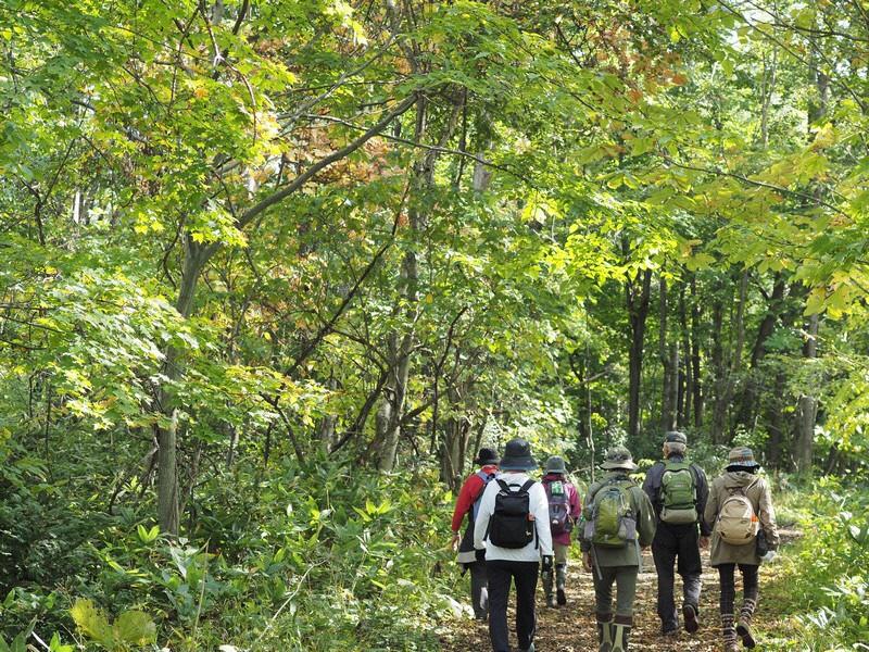 自然観察会「秋の森の匂いをかごう」