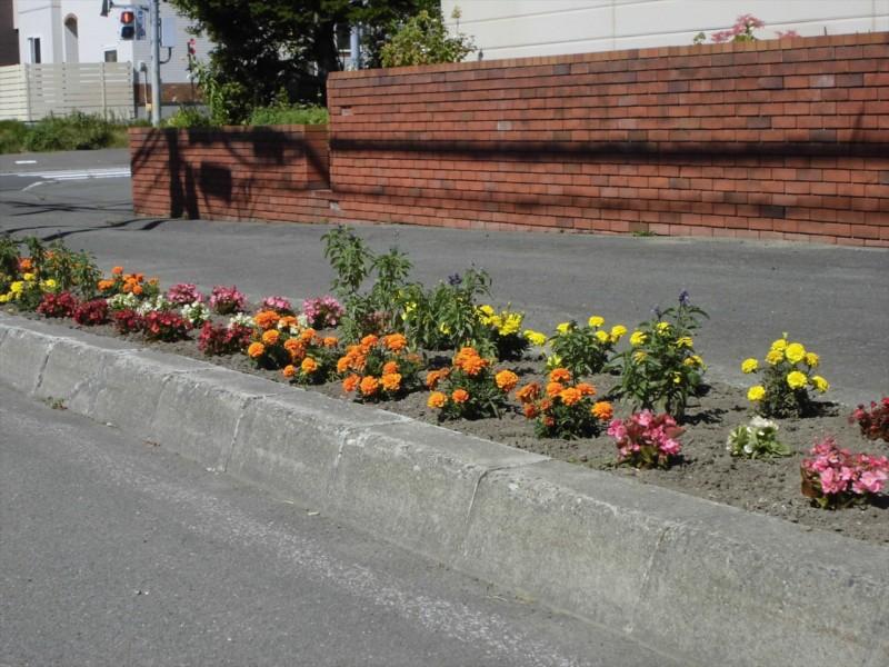 花のある街並みづくり写真展